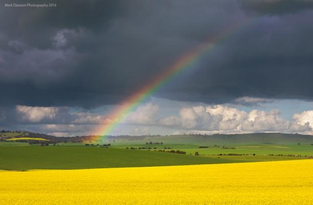 Rainbow under weak convection.