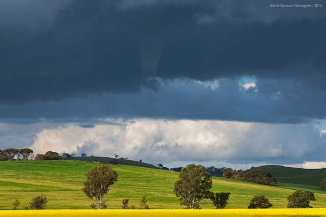 Funnel cloud under a developing cell.