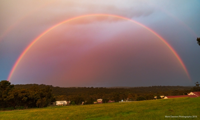 A very tall rainbow (the sun was just below the horizon) graces the sky in the Clare Valley as thunderstorm remnants drift through.